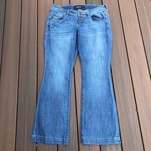 Torrid Flare Jeans
